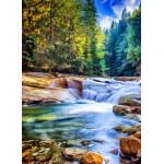 Puzzle  Grafika-02834 Schöner Wasserfall im Wald