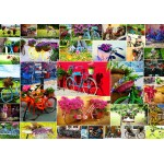 Puzzle  Grafika-02907 Collage - Fahrräder