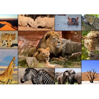 Puzzle Grafika-T-00132 Collage - Wildlife