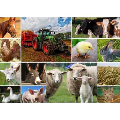 Puzzle  Grafika-T-00140 Collage - Bauernhoftiere