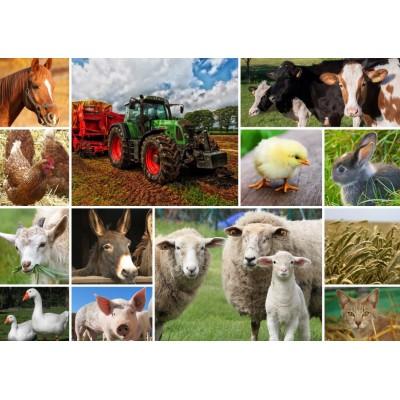 Puzzle  Grafika-T-00141 Collage - Bauernhoftiere