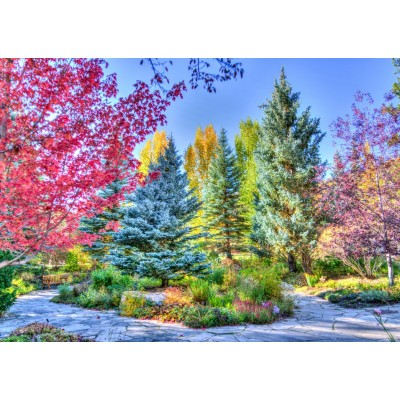 Puzzle Grafika-T-00851 Bunter Wald, Colorado, USA