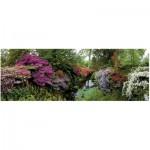 Heye-29473 Puzzle 6000 Teile Panorama - Alexander von Humboldt: Bodnant Garden