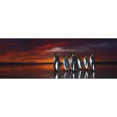 Puzzle Heye-29858 Wim van den Heever - King Penguins