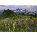 Puzzle  Heye-29903 Tatoosh Mountains