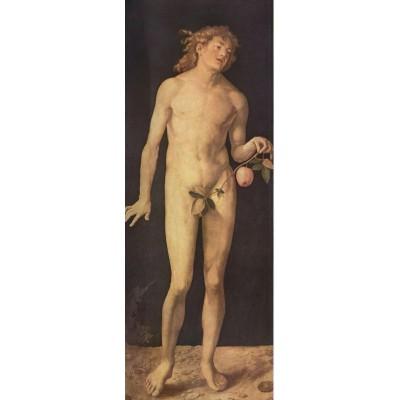 Puzzle  Impronte-Edizioni-152 Albrecht Dürer - Adam