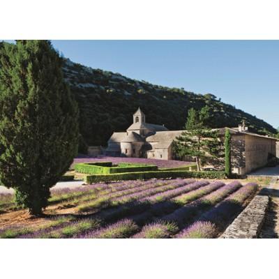 Puzzle  Jumbo-18352 Provence