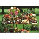 Puzzle  Jumbo-18582 Obst und Gemüse