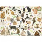 Puzzle  Jumbo-18595 Collection Katzen Poster