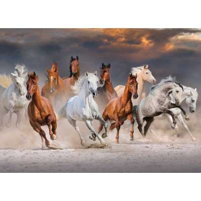 Puzzle  Jumbo-18864 Desert Horses