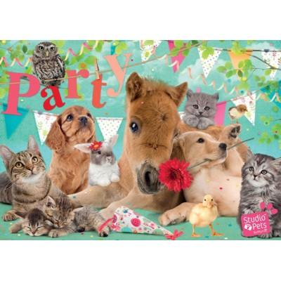 Puzzle Jumbo-19351 Studio Pets - Happy Birthday