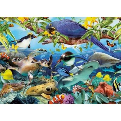 Puzzle  King-Puzzle-05482 Wunder der Tierwelt