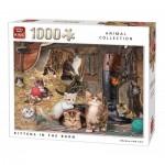 Puzzle  King-Puzzle-05700 Kätzchen in der Scheune