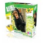 Puzzle  KS-Games-10103 Baby Chimp