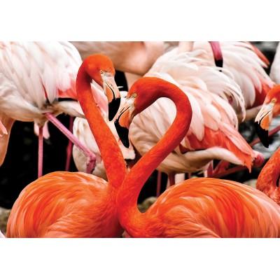 Puzzle  KS-Games-10107 Flamingo Lovers