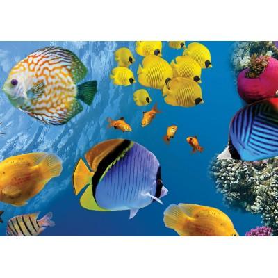 Puzzle  KS-Games-10113 Underwater