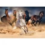 Puzzle  KS-Games-20514 Wild Horses