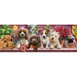 Puzzle  KS-Games-21009 Puppies