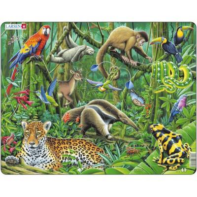 Larsen-FH10 Rahmenpuzzle - Tiere des Tropenwaldes