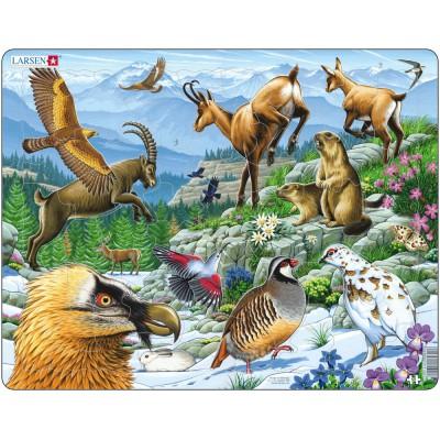 Larsen-FH12 Rahmenpuzzle - Tiere der Berge