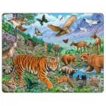 Larsen-FH39 Rahmenpuzzle - Der Amur-Tiger im sibirischen Sommer