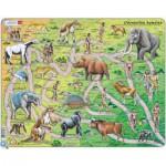 Larsen-HL3-FR Rahmenpuzzle - Der Weg vom Affen zum Menschen (auf Französisch)
