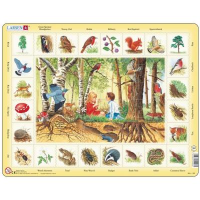 Larsen-NA4-GB Rahmenpuzzle - Im Wald (auf Englisch)