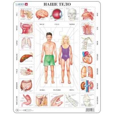 Larsen-OB1-RU Rahmenpuzzle - Unser Körper (auf Russisch)