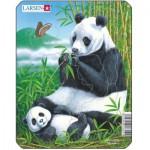 Larsen-V4-1 Rahmenpuzzle - Pandas