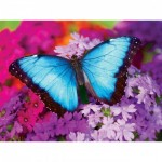 Puzzle  Master-Pieces-31622 Iridescence - Butterfly