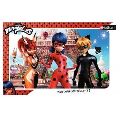 Nathan-86019 Frame Puzzle - Ladybug