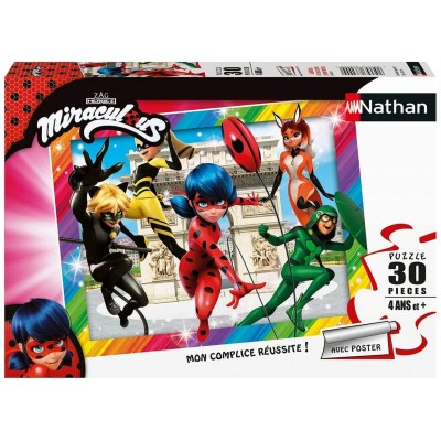 Puzzle  Nathan-86385 Ladybug