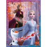 Puzzle  Nathan-86864 Frozen II