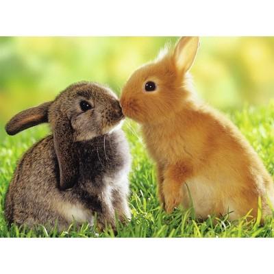 Puzzle  Nathan-87202 Kaninchenküsse