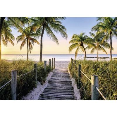 Puzzle  Nathan-87547 Strand von Florida
