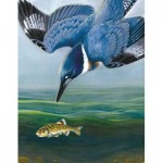 Puzzle  New-York-Puzzle-CB1856 Belted Kingfisher Mini