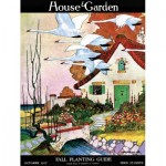 Puzzle  New-York-Puzzle-HG2111 Swan Cottage