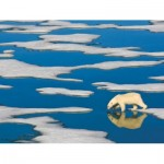 Puzzle  New-York-Puzzle-NG1990 XXL Teile - Polar Bear on Ice