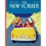 Puzzle  New-York-Puzzle-NY2049 Summer Friday Mini