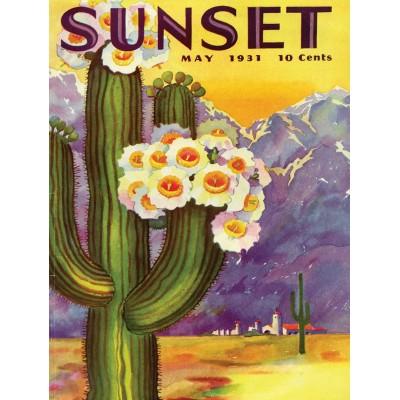 Puzzle  New-York-Puzzle-SU2017 XXL Teile - Cactus Blooms
