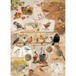 Puzzle  Otter-House-Puzzle-72633 Garden Birds