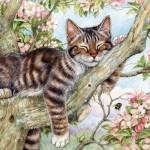 Puzzle  Otter-House-Puzzle-74127 Catnap