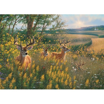 Puzzle  Cobble-Hill-51789-80092 Rehe im Sommer