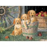 Puzzle  Cobble-Hill-54590 XXL Teile - Terry Doughty - Puppy Pail