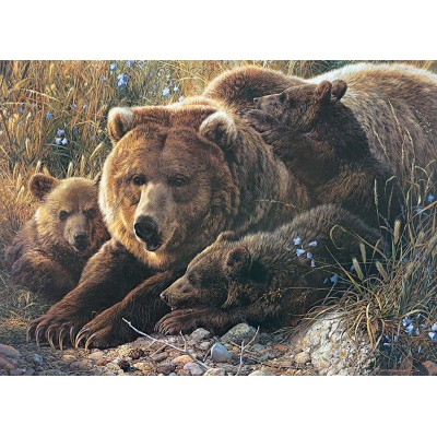 Puzzle  Cobble-Hill-54624 XXL Teile - Grizzly Family