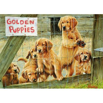 Puzzle  Cobble-Hill-57152 Goldene Welpen