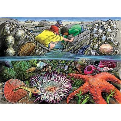 Cobble-Hill-58805 Rahmenpuzzle - Exploring the Seashore