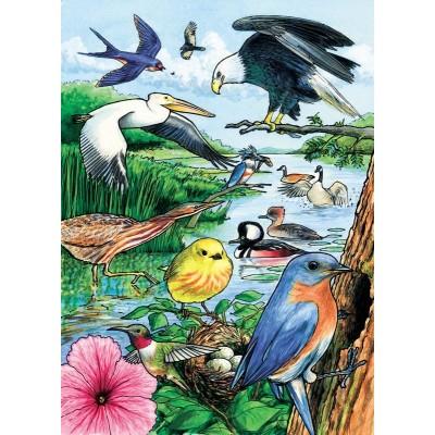 Cobble-Hill-58809 Rahmenpuzzle - North American Birds