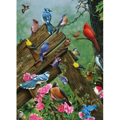 Puzzle Cobble-Hill-80086 Birds of the Forest