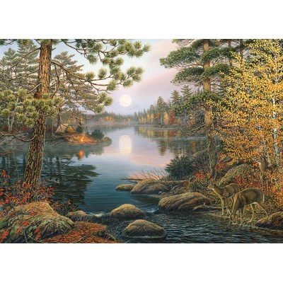 Puzzle  Cobble-Hill-80139 Deer Lake